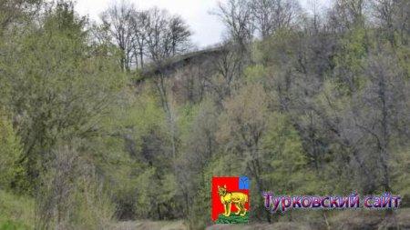 Село Чапаевка (Лодонка) Турковский район, Саратовская область